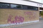 Wiesbaden Graffiti Reinigung, Graffiti reinigen Firma, Graffiti entfernen Wiesbaden